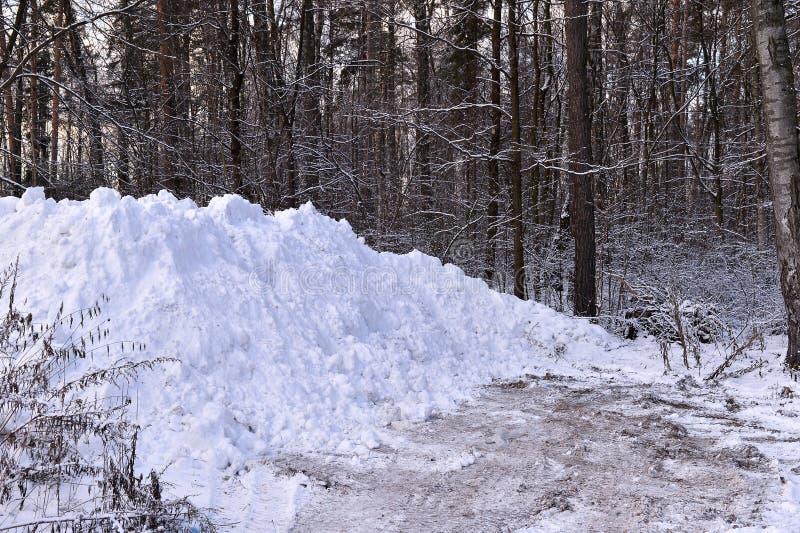 Ein Stapel des Schnees, wenn im Wald die Straße geklärt wird lizenzfreies stockfoto