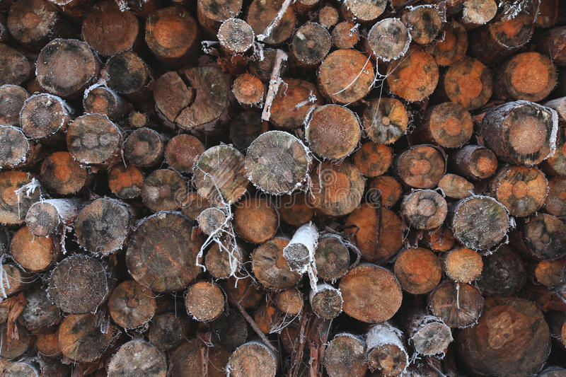 Ein Stapel von hölzernen Baumklotz stockbild