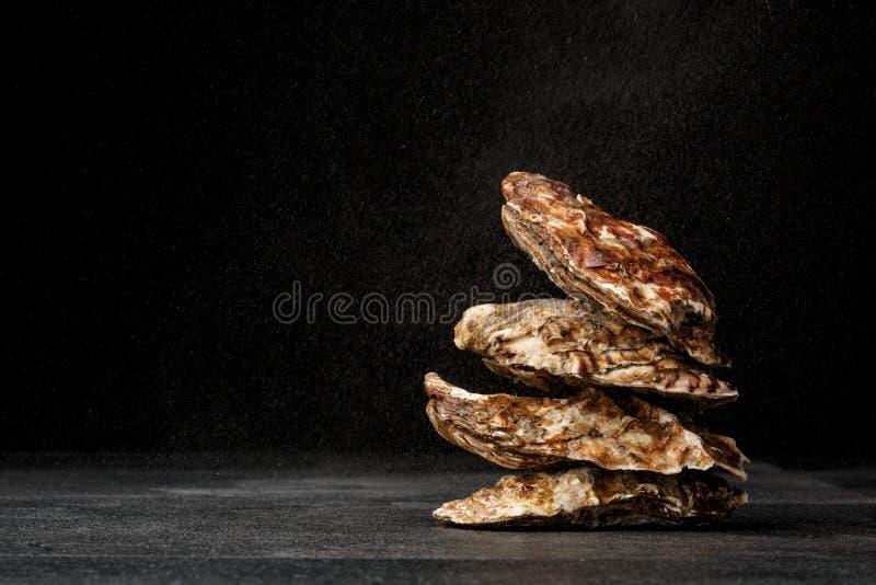 Ein Stapel von vier geschmackvollen frischen Austern auf einem schwarzen Hintergrund Köstliche tropische Seemolluske Die größte Z stockfoto