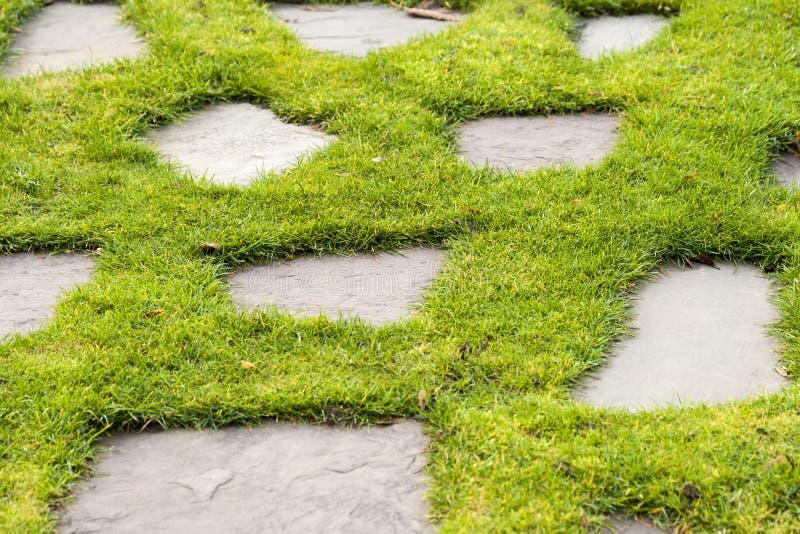 Ein Steinweg im Parkgarten des grünen Grases stockbild