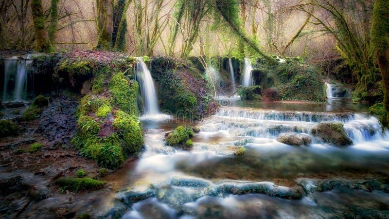 Ein Strom läuft durch den Wald, der viele kleinen Wasserfälle herstellt lizenzfreies stockfoto