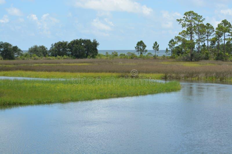 Ein Strom nahe Carrabelle Florida stockfotos