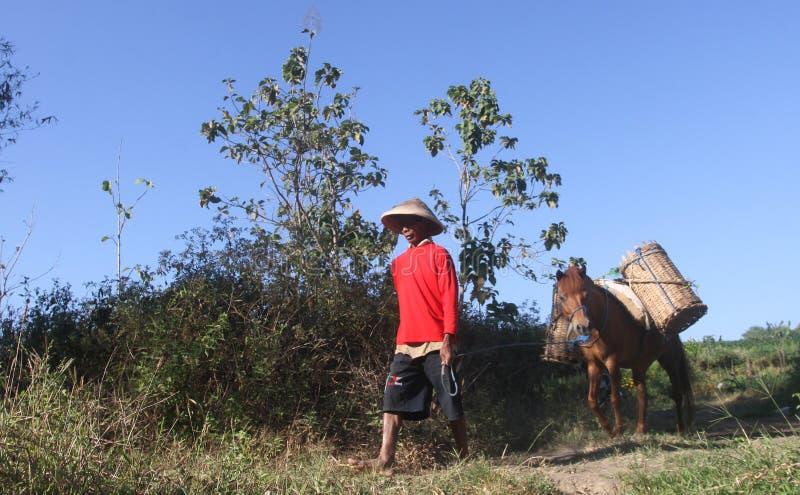 Ein Sucher Ladu Ladu oder Sand stockfoto
