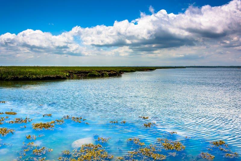 Ein Sumpf auf Strathmere-Bucht, in Strathmere, New-Jersey stockfotos