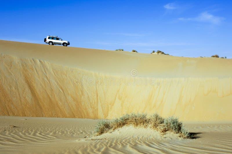 Ein SUV-Auto auf eine Sanddüne in Unebenheits-Al Khali-Wüste lizenzfreie stockfotos