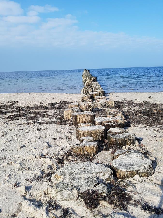 Ein Tag in dem Meer lizenzfreie stockfotografie