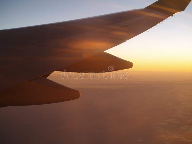 Ein Tag fliege ich weg stockbild