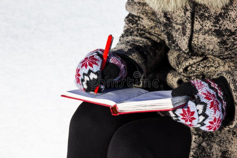 In ein Tagebuch draußen schreiben stockfotos