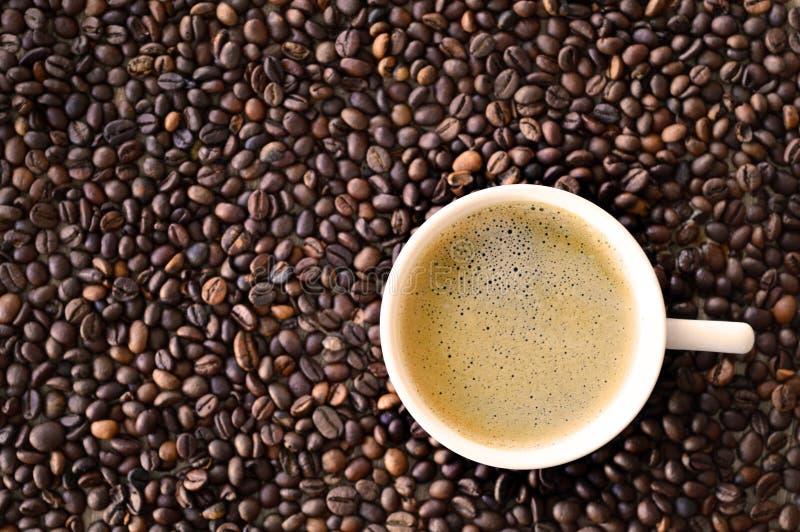 Ein Tasse Kaffee auf Kaffeebohnen stockfotografie