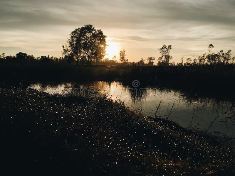 Ein taunasser Morgen stockbild