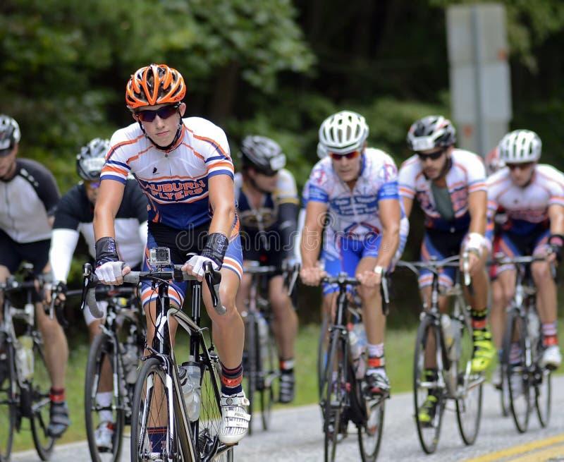 Ein Team von Fahrrad-Reitern lizenzfreie stockfotos