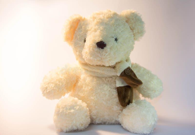 Ein Teddybär mit weißem Hintergrund und weichem Licht lizenzfreie stockfotografie