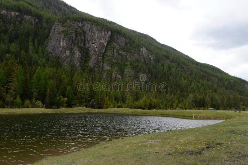 Ein Teich gegraben vom Militär für das Schwimmen auf den Stadtränden des Dorfs von Aktash in der Altai-Republik lizenzfreies stockbild