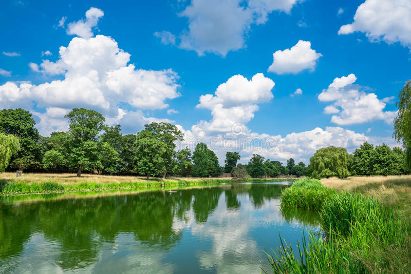 Ein Teich in Hampton Court Park stockfoto