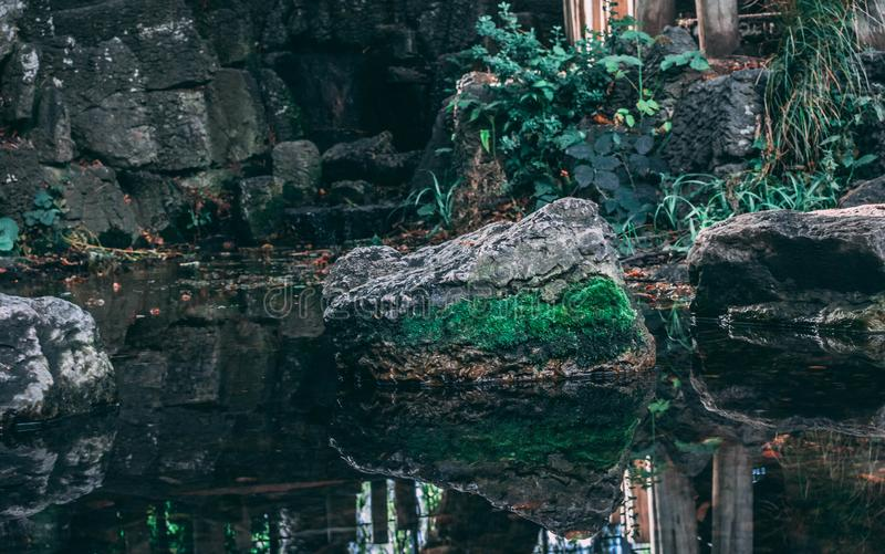 Ein Teich in Wimbledon-Park London stockfotografie