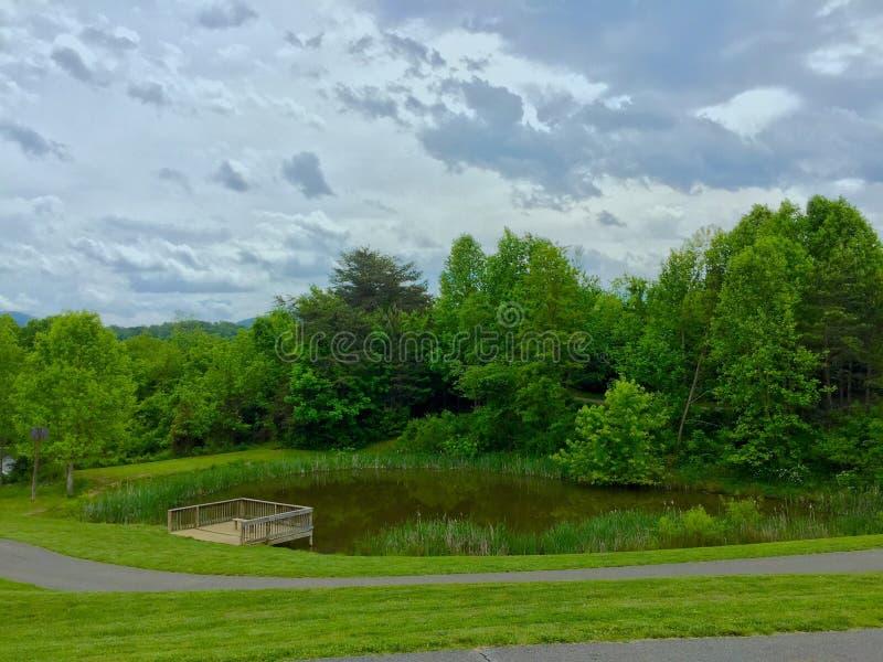 Ein Teich zu erwägen stockfoto