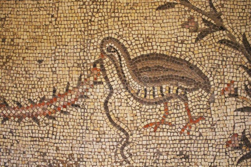 Ein Teil des byzantinischen Bodenmosaiks Die Kirche der Vermehrung der Laibe und der Fische in Tabgha, Israel pilgrimage lizenzfreies stockbild