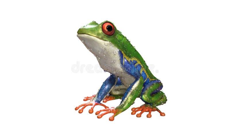 Ein Tier des tropischen Regenwaldes mit dem vibrierenden Auge lokalisiert auf einem weißen Hintergrund stock abbildung