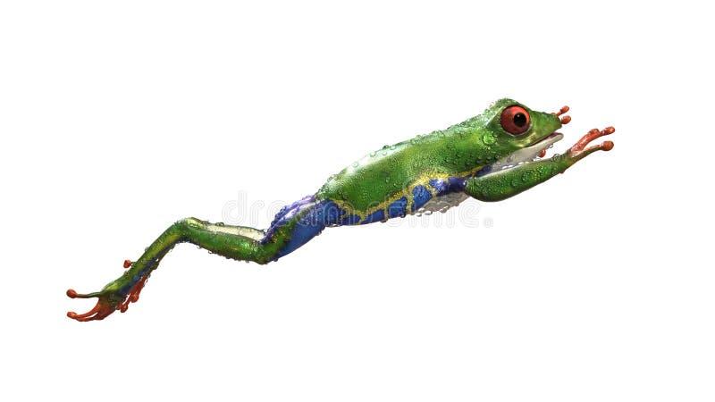 Ein Tier des tropischen Regenwaldes mit dem vibrierenden Auge lokalisiert auf einem weißen Hintergrund vektor abbildung