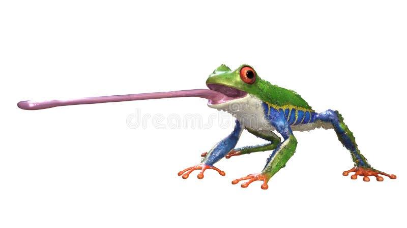 Ein Tier des tropischen Regenwaldes mit dem vibrierenden Auge lokalisiert auf einem weißen Hintergrund lizenzfreie abbildung