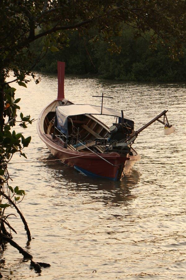 Ein traditioneller fishingboat Anker am Mangrovenwald stockbild