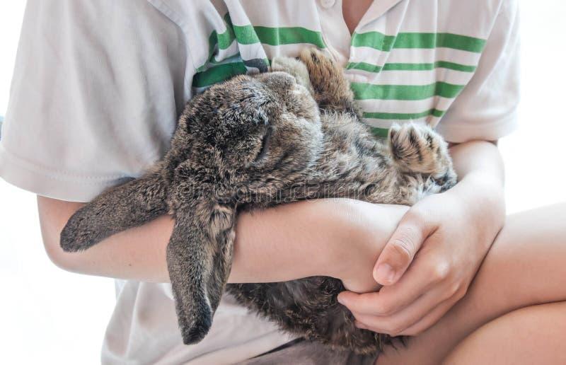 Ein tragendes flaumiges Kaninchen Schlafens des Mädchens, lokalisiert auf weißem Hintergrund stockfotos