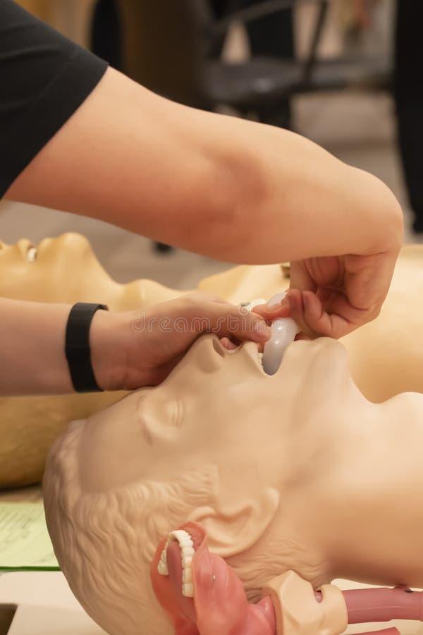Ein Trainer demonstrieren, wie man Mundfluglinie auf ein CPR-Modell setzt stockbilder