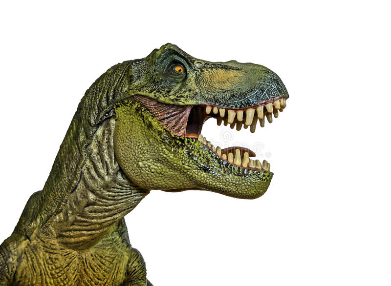 Ein Tyrannosaurus jagt auf einem weißen Hintergrund stockfoto
