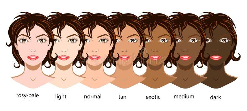 Ein Vektorsatz von sechs Arten Haut von blassem zu exotischem stock abbildung