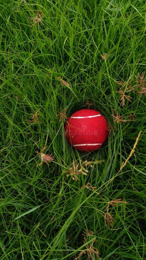 Ein verlorener Ball lizenzfreie stockfotos