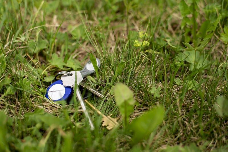 Ein verlorener Schlüsselbund und eine Schlüsselringlüge im grünen Gras an einem Frühlingstag lizenzfreies stockfoto