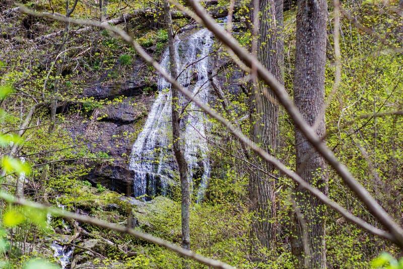 Ein versteckter Kaskadengebirgswasserfall lizenzfreies stockfoto