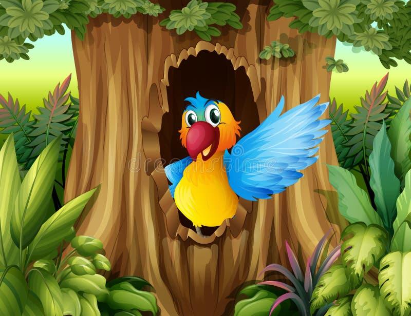 Ein Vogel in einer Baumhöhle lizenzfreie abbildung