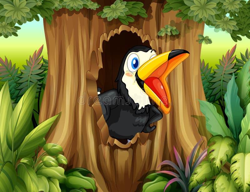 Ein Vogel in einer Baumhöhle stock abbildung