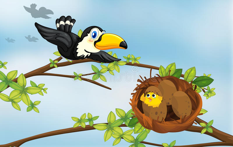 Ein Vogel und sein Nest lizenzfreie abbildung