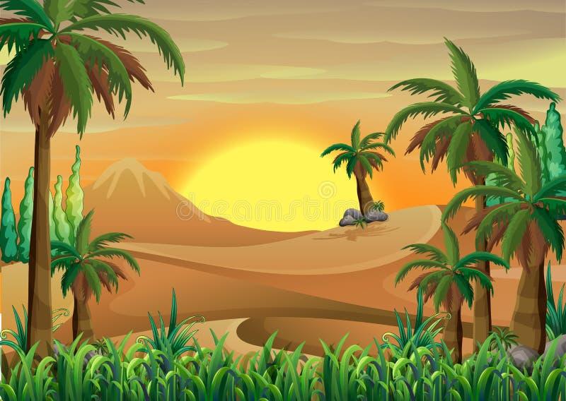 Ein Wald an der Wüste stock abbildung