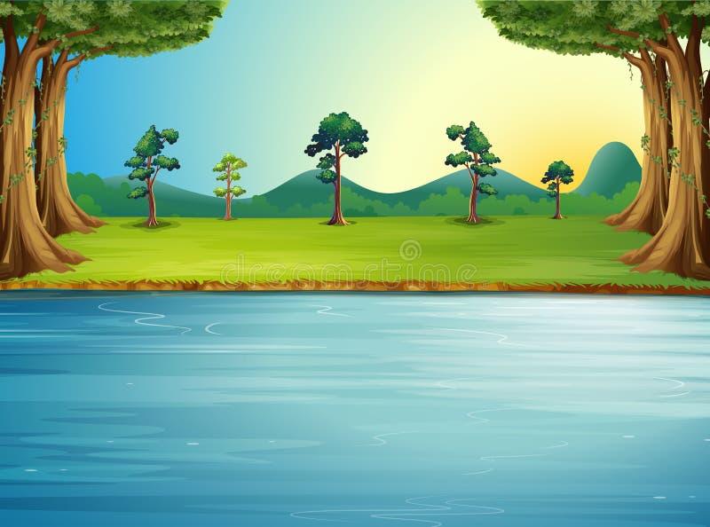 Ein Wald mit einem Fluss stock abbildung