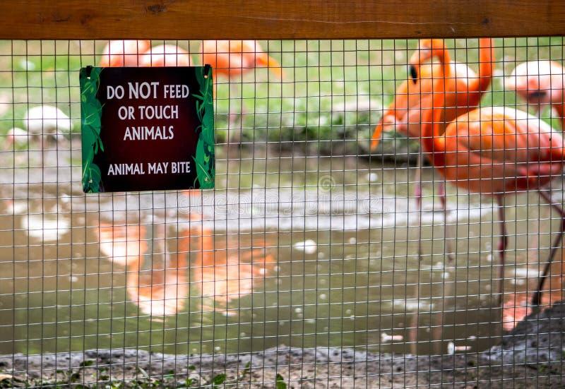 Ein Warnzeichen an einem lokalen Zoo stockfotografie