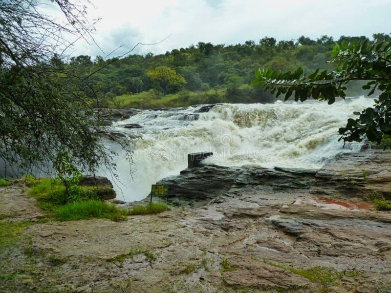 ein Wasserfall in Afrika am Sommer lizenzfreie stockfotografie