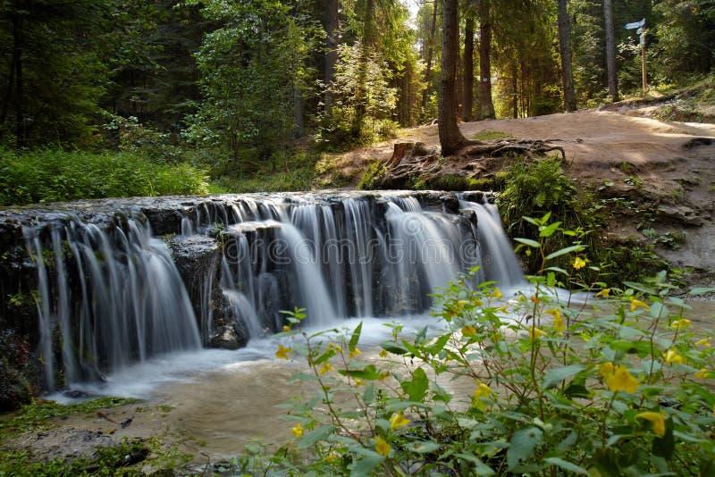 Ein Wasserfall auf einem Nebenfluss auf einem Sommermorgen stockfotografie