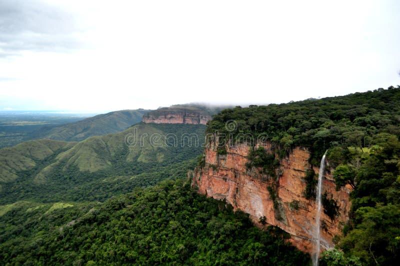 Ein Wasserfall im forrest stockbild