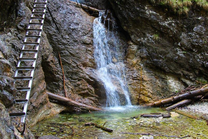 Ein Wasserfall im slowakischen Paradies stockbild