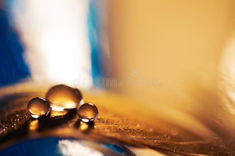 Ein Wassertropfen auf einer goldenen Feder mit einem blauen Hintergrund Eine Feder mit einem Wassertropfen Selektiver Fokus lizenzfreie stockfotografie