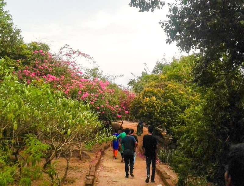 Ein Weg in den Gärten lizenzfreie stockfotografie
