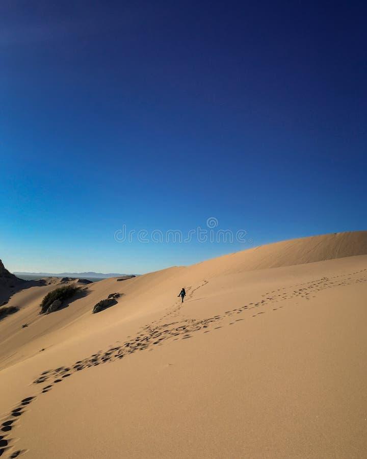 Ein Weg in der Wüste lizenzfreie stockfotos
