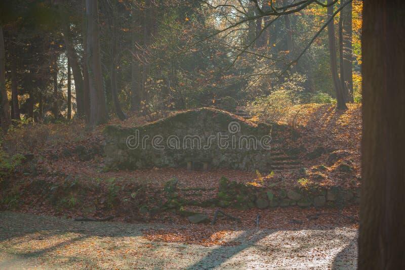 Ein Weg durch einen Herbstwald stockfotos