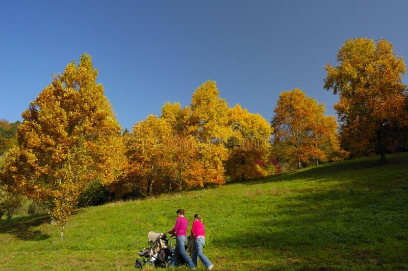 Ein Weg im Herbst lizenzfreie stockfotos