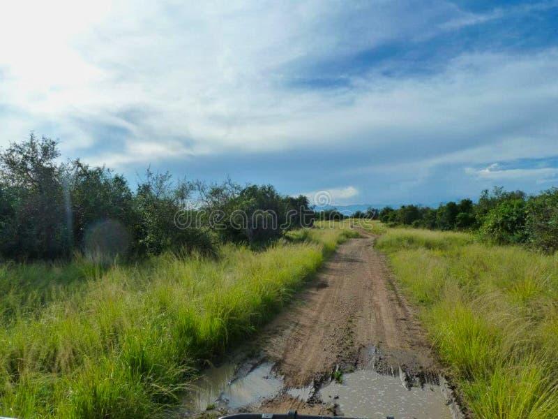 ein Weg nach dem Regen lizenzfreie stockfotos