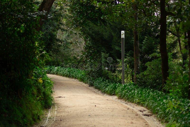 Ein Weg zum Garten in Sintra stockbild