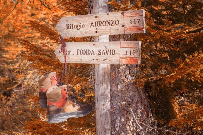 Ein Wegweiser, der die Richtung zum Schutz Fonda Savio und Auronzo in Itlay zeigt lizenzfreie stockbilder